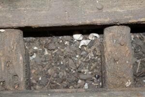 F. Debris in the bilges